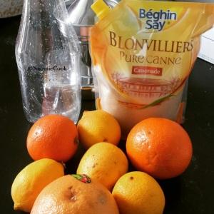 jus_juice_agrume_citrus